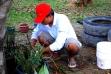 Pastor Yulius Tangka Bandaso,SX - dengan kebunnya